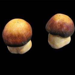 Sel poivre Paire de champignons
