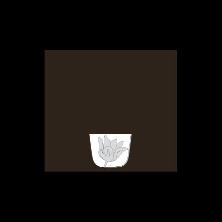Verre à eau collection Tulipmania