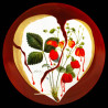 Plat rond en porcelaine décor Salvador Dali, n°335